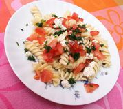 Fresh pasta. Some fresh pasta with cheese and tomatoes Stock Photos