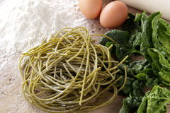 Fresh pasta spaghetti whit spinach Royalty Free Stock Images