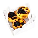 Fresh Pastel de Nata - creamy sweet curstard with black crust an Royalty Free Stock Image