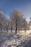 Fresh path in snow stock images