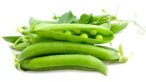 Fresh pea fruit Stock Images