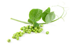 Fresh pea fruit with green leaf. On white background Royalty Free Stock Photography