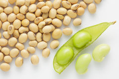 Fresh pea pod and dry soybean on white background. Royalty Free Stock Image