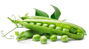 Fresh pea in the pod with green leaves Stock Photography