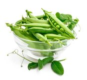 Fresh pea in the pod with green leaves royalty free stock photography
