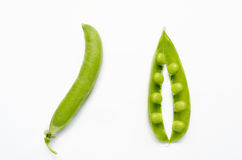 Fresh pea pods Royalty Free Stock Photo