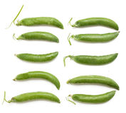 Fresh pea pods of different size and shape Stock Photography