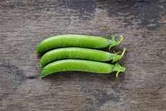 Fresh pea pods in a row Stock Photos