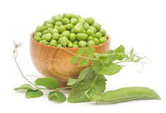 Fresh Pea With Green Leaf Isolated On White Background Stock Photos