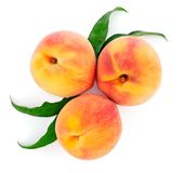 Fresh peach fruits with green leaf royalty free stock photography