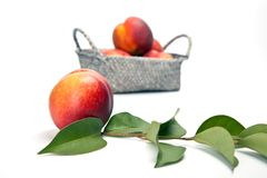 Fresh peach fruits with green leaves isolated on white backgroun Stock Photography