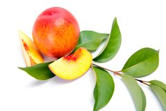 Fresh peach fruits with green leaves isolated on white backgroun Royalty Free Stock Images