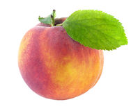 Fresh peach with green leaf Royalty Free Stock Photos