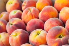Fresh peach heap Stock Image