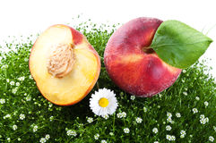 Fresh peach isolated on a white background Stock Images