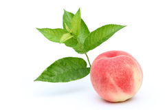 Fresh peach and leaves Royalty Free Stock Photography