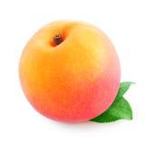 Fresh peach royalty free stock photography