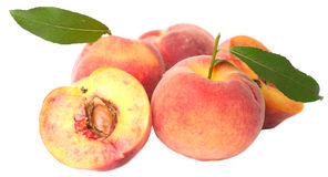 Fresh peach Stock Photos