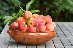 Fresh peaches. A horizontal view of very juicy peaches in a bowl Stock Photo