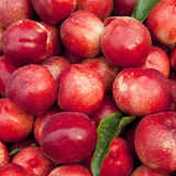 Fresh Peaches. For sale at a stand Royalty Free Stock Photos