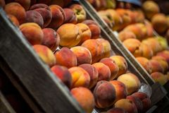 Fresh peaches. On display at a farmer's market Royalty Free Stock Photo