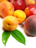 Fresh peaches and apricots. Isolated on white Royalty Free Stock Photo