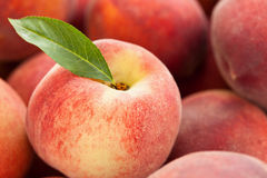 Fresh peaches background. Royalty Free Stock Images