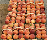 Fresh Peaches in a Basket at the Farmer's Market Stock Photography