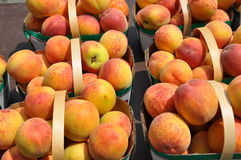 Fresh peaches. In basket for sale Royalty Free Stock Photo