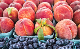 Fresh peaches and blueberries Stock Images