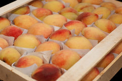 Fresh peaches in a box Stock Photography