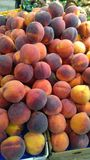 Fresh peaches on display Stock Photography