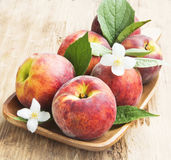 Fresh Peaches with Flowers and Leaves Stock Image