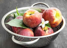 Fresh Peaches with Flowers and Leaves Royalty Free Stock Photography