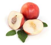 Fresh peaches fruits Stock Photography