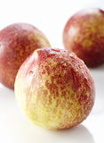 Fresh peaches, A group of colorful nectarine fruit Royalty Free Stock Photos