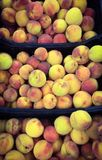 Fresh Peaches at a Market. Closeup of peaches arranged for sale at a fruit market Stock Photos