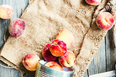Fresh peaches in a tin, space for text,healthy raw food Stock Image