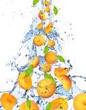 Fresh Peaches Royalty Free Stock Image