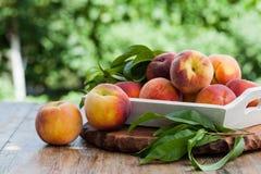 Fresh peaches. On wood background Stock Image