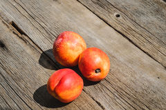 Fresh peaches on wood background Stock Image