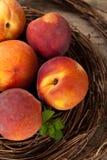 Fresh peaches Royalty Free Stock Photos