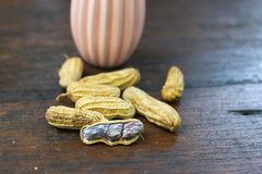 Fresh peanut to boil. On table wood royalty free stock photo