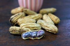 Fresh peanut to boil. On table wood stock images