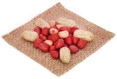 Fresh Peanuts Royalty Free Stock Photos