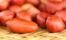 Fresh Peanuts Stock Image