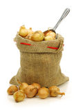 Fresh pearl onions in a burlap sack Royalty Free Stock Image