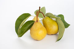 Fresh pears Stock Image