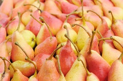 Fresh pears. Stock Images
