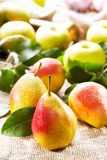 Fresh pears and apples Royalty Free Stock Photos